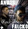 falcko-ana2s-faux-freres