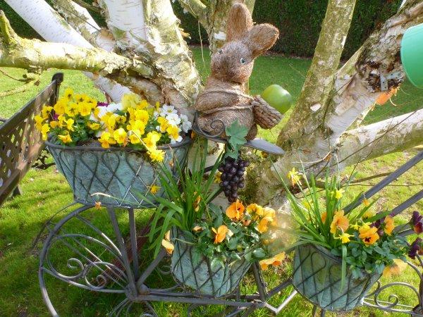 mon jardin fleuri au printemps jolie nature. Black Bedroom Furniture Sets. Home Design Ideas