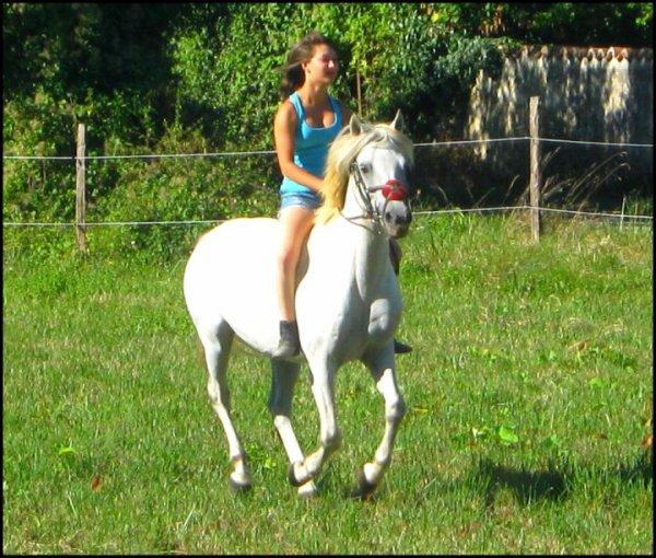 L'amour de ma vie..Mon poney,un vrai p'tit con <3 Niccolo D'Arquetan <3