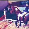 horse-love-schleich
