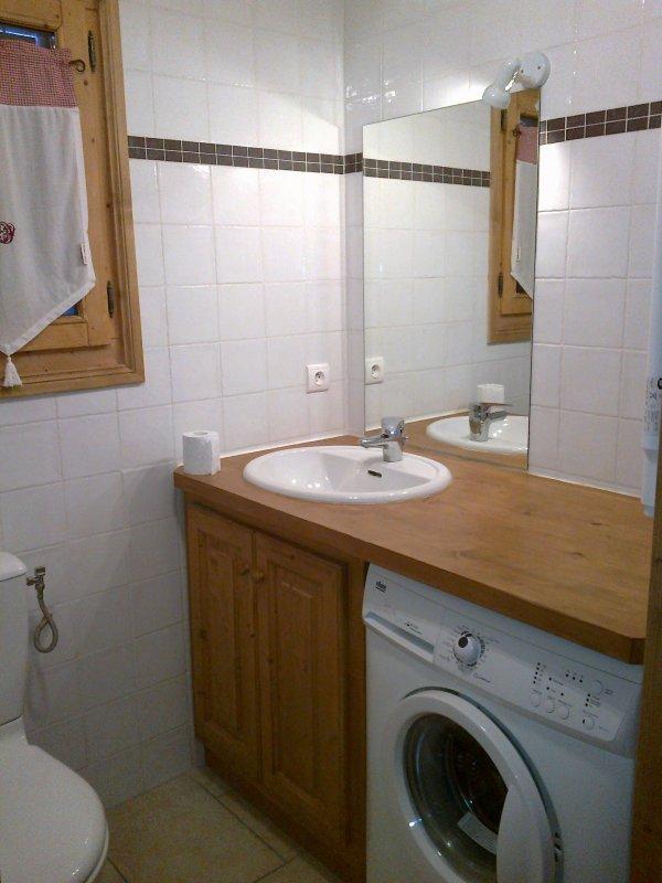 La salle de bain chalet marie c02 louer t comme for Petite salle de bain avec wc
