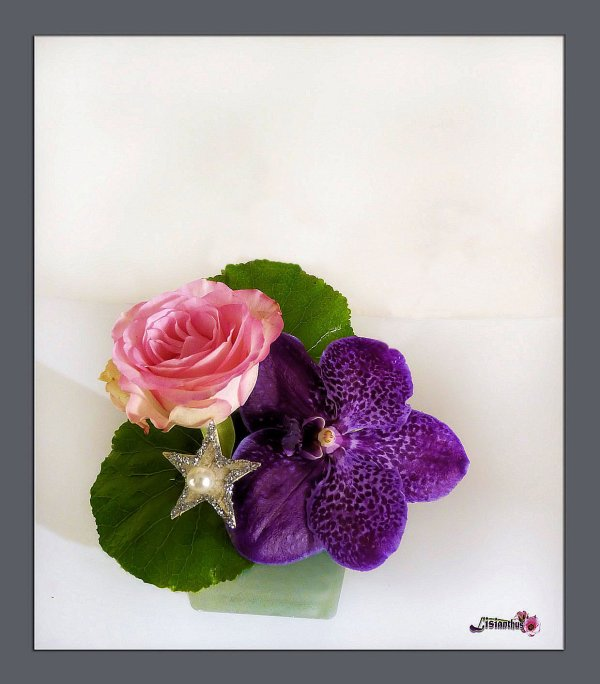 la rose & l'orchid�e