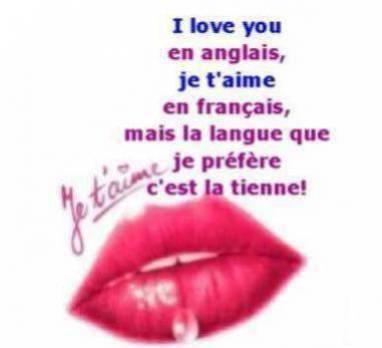 I love you en anglais je t 39 aime en francais mais la langue que je pr f re c 39 est la - C est la ouate que je prefere ...