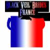 Black-Veil-Brides-France