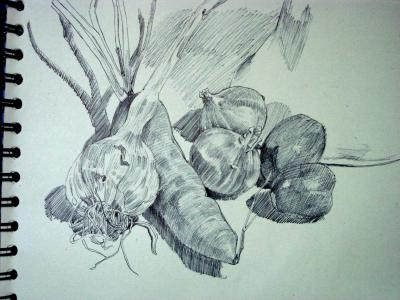 Nature morte dessins peintures illustrations - Dessin nature morte ...