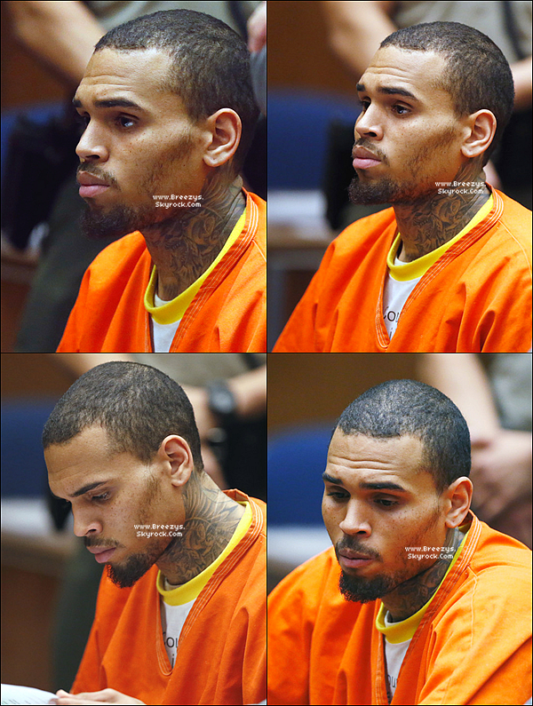 . 18.03.2014 : Chris a �t� apper�u au tribunal a los angeles. .