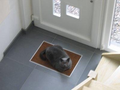 en tout cas il y en un qui aime le paillasson encastr blog de la casa de notre vie. Black Bedroom Furniture Sets. Home Design Ideas
