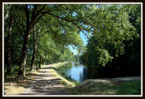 Partie de p�che en famille sur le canal