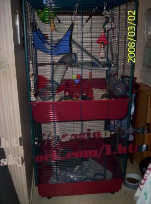 le nouveau loft de mes touilles cage furet tower. Black Bedroom Furniture Sets. Home Design Ideas