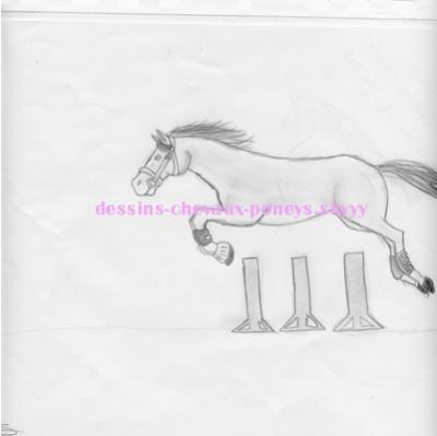 Cheval qui saute noire et blanc dessins de - Cheval qui saute dessin ...