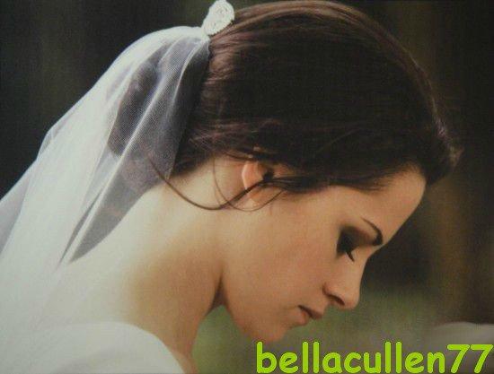 ♫ Bienvenue chez bellacullen77 ♫
