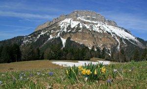 L'ASPTT Nice � l'Ultra Trail des 4 Massifs - UT4M (Grenoble - 38)