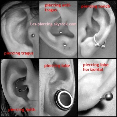 Piercing oreille blog de les piercing for Interieur oreille