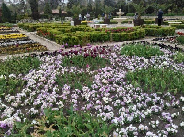jardin botanique de balchik bulgarie beaute