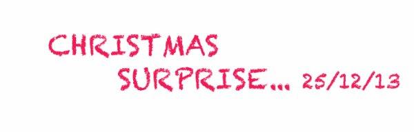 SURPRISE NOEL & CONCERT LE 4 JANVIER 2014