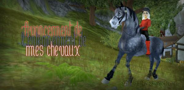 Entra�nement de mes chevaux ~