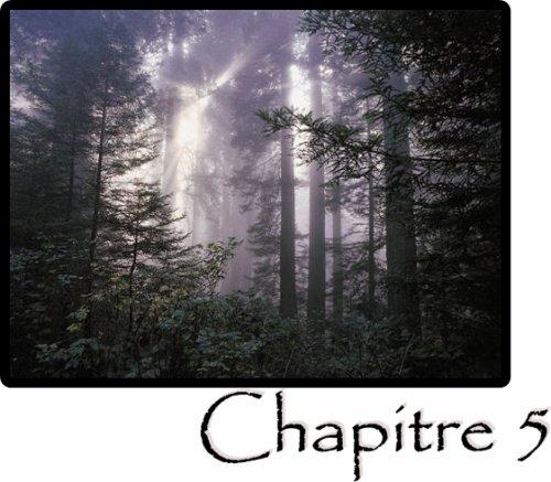 Chapitre 5 : Cher journal
