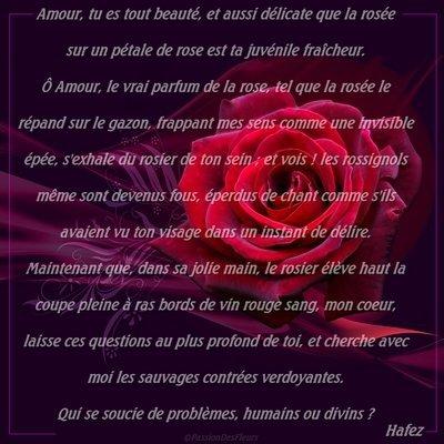 Po mes d 39 amour pour toutes et tous pour le 14 f vrier 2011 pour la saint valentin kikou c - Poeme d amour pour la saint valentin ...