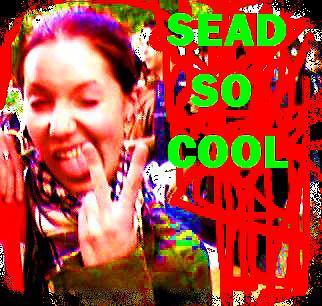 sead-cool42