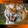 Encore un tigre!!!