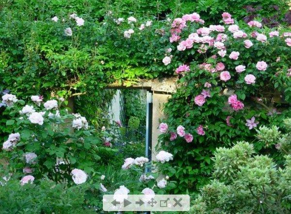 Le jardin botanique de la petite rochelle remalard la vie sans numeraire en milieu rural - Petit outillage de jardin wolf la rochelle ...