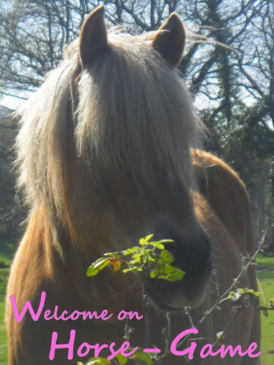 Welcome ♥ Horse-Game �