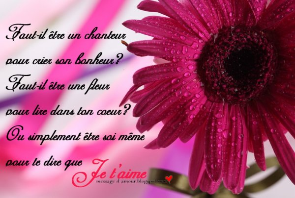 les citations damour skyrock anti love quotes
