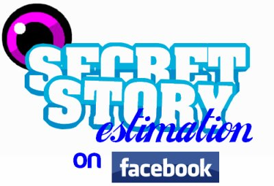 Estimation Secret Story, d�j� sur Facebook !