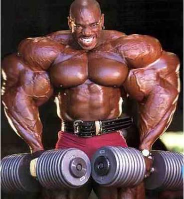 l homme le plus muscle au monde - oussadinho le blog le