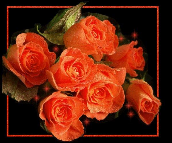 les fleurs de l 39 amitie que je vous offre avec mon coeur bisous a vous blog de faonne. Black Bedroom Furniture Sets. Home Design Ideas