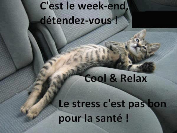 JE VIENS VOUS SOUHAITER UN BON WEEK-END .... RESTEZ ZEN ET SOYEZ HEUREUX ... BONNE JOURNEE ET GROS BISOUS  !!!!